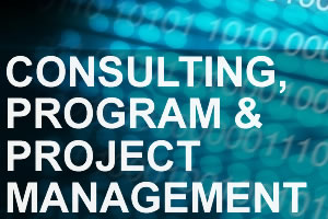 Consulting, Program and Project Mgmt image